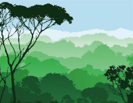 林業ICT/スマート林業
