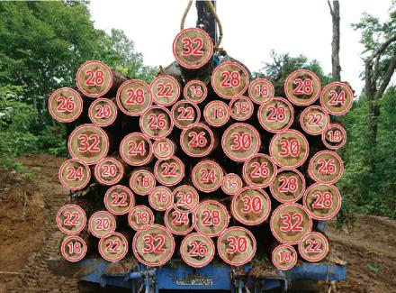 木材検収システム